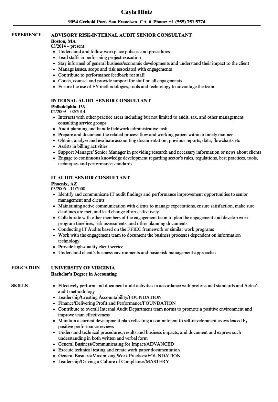 Audit Senior Consultant Resume Samples | Velvet Jobs