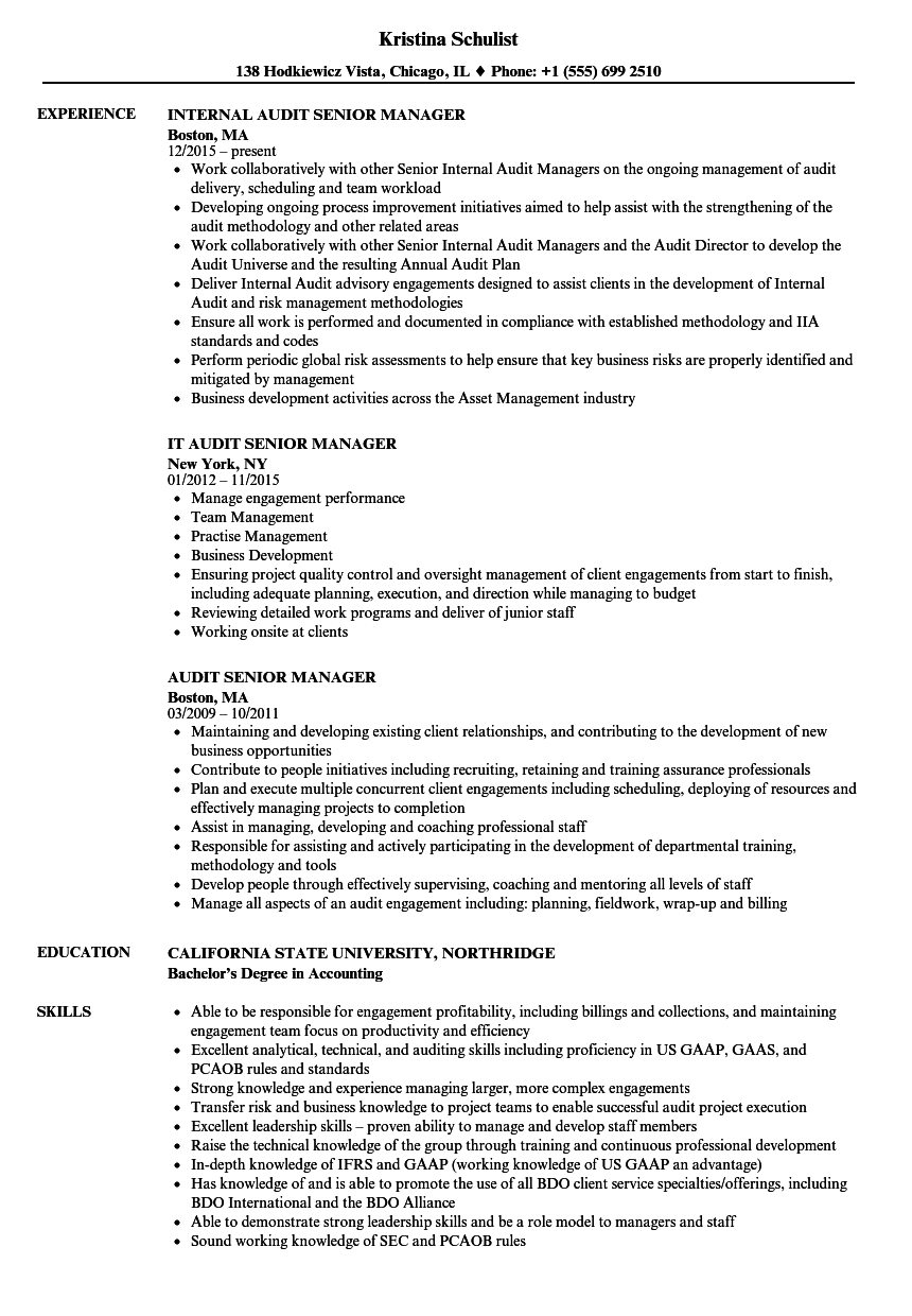 audit senior manager resume sample as image file