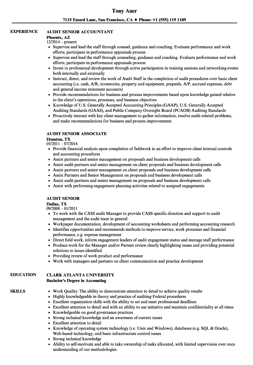 Audit Senior Resume Samples | Velvet Jobs