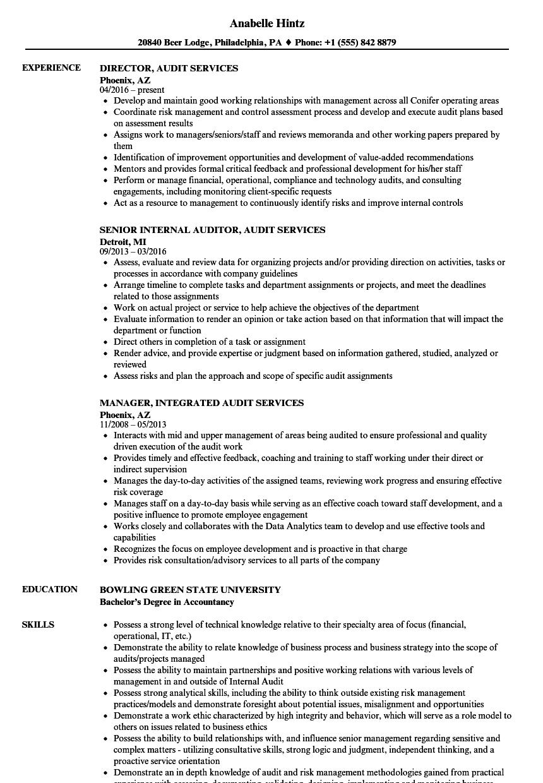 Audit Services Resume Samples Velvet Jobs