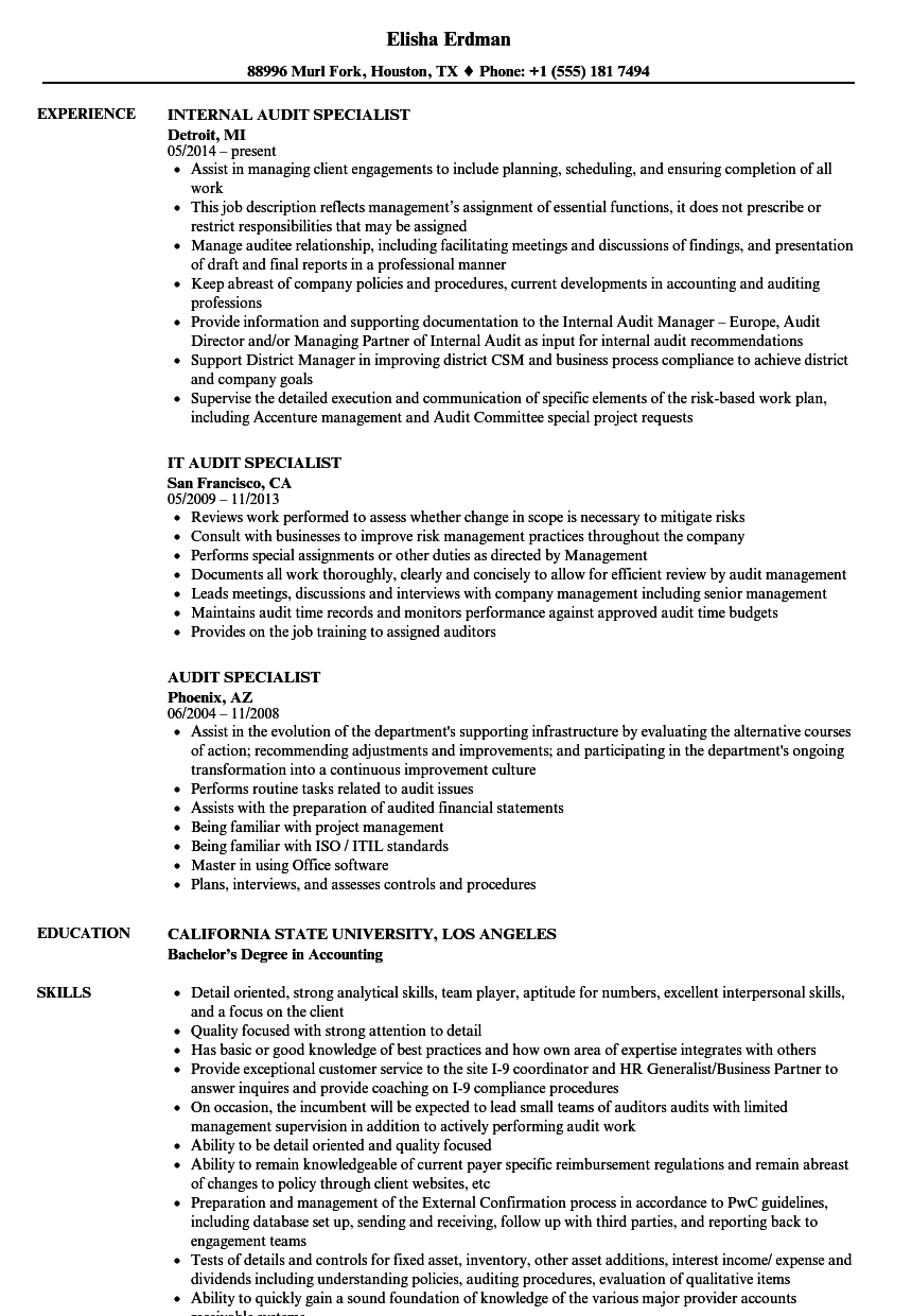 audit specialist resume samples velvet jobs