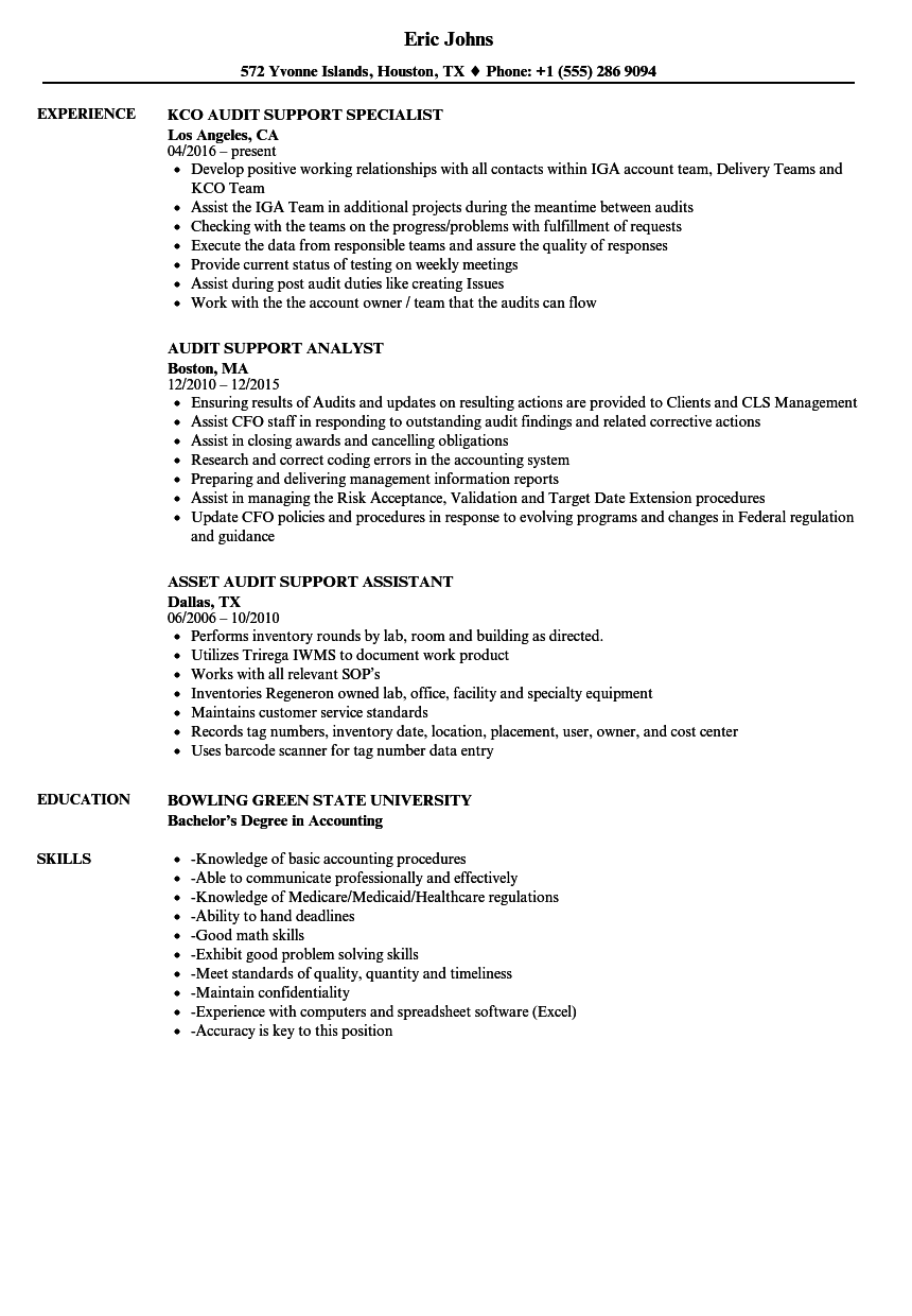 Audit Support Resume Samples | Velvet Jobs