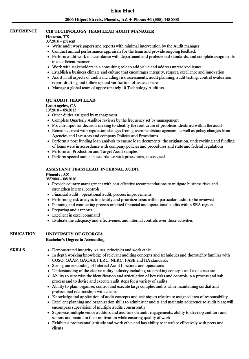... Audit Team Lead Resume Sample As Image File  Team Lead Resume