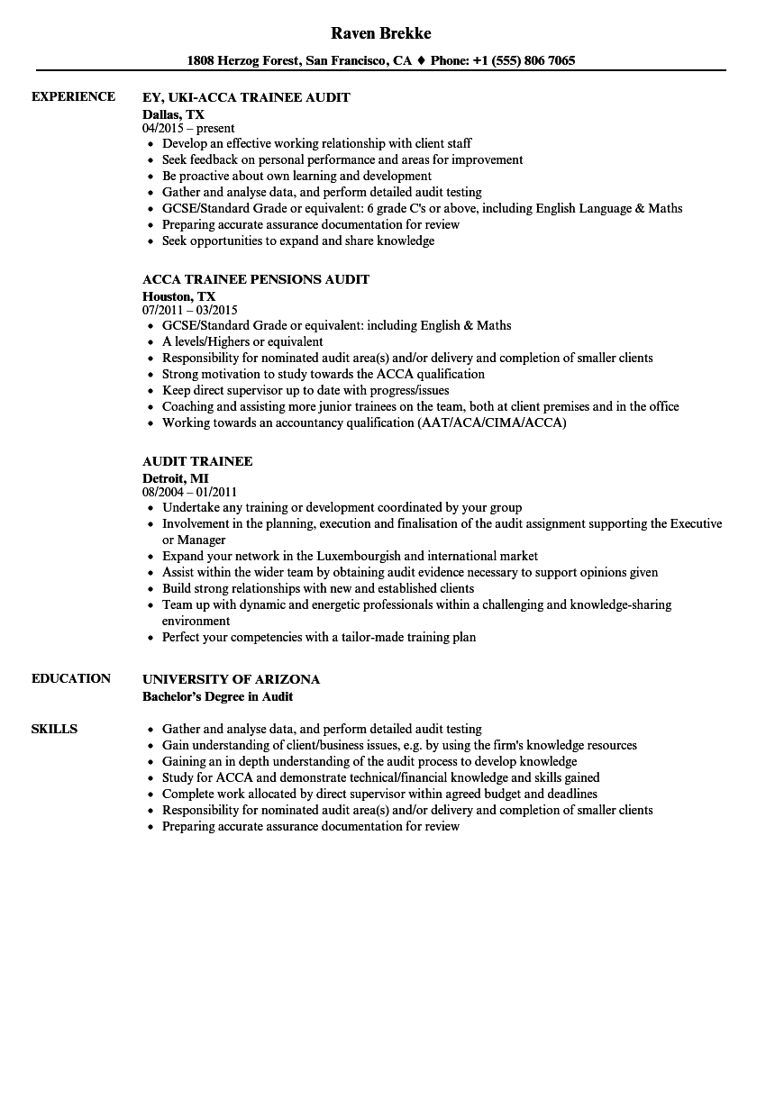 Audit Trainee Resume Samples | Velvet Jobs