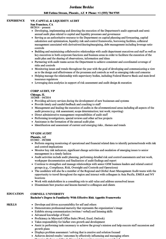 audit vp resume samples