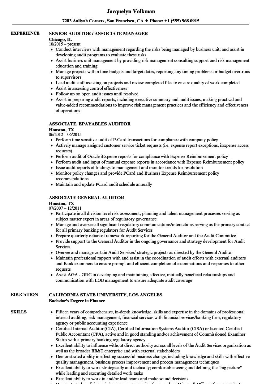 auditor associate resume samples