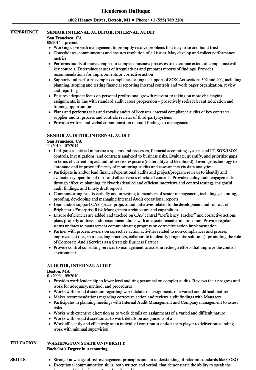 Auditor Internal Audit Resume Samples | Velvet Jobs