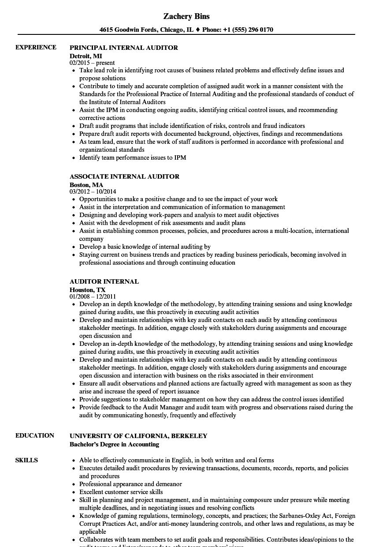 auditor internal resume samples
