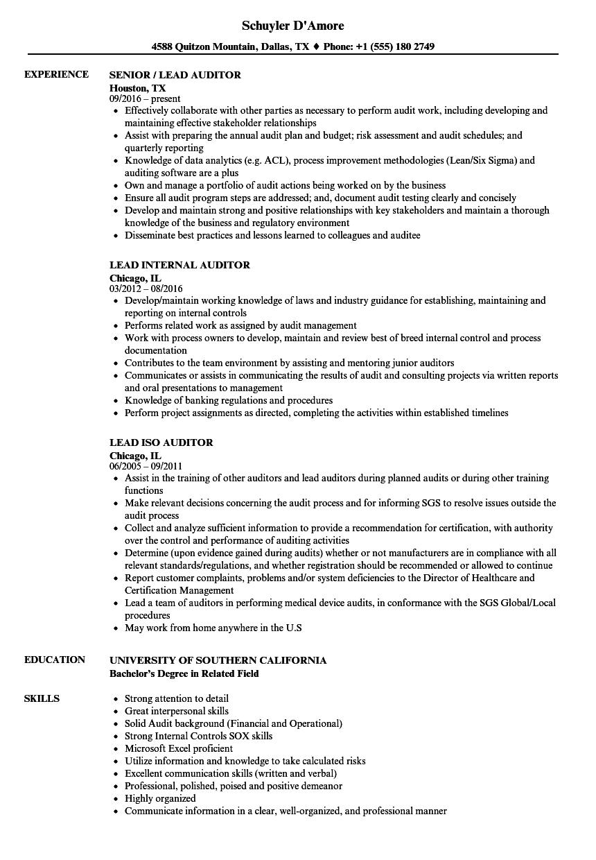 Auditor Lead Resume Samples Velvet Jobs