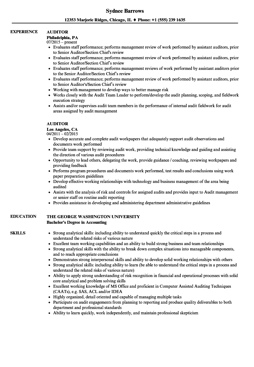 Auditor Resume Samples | Velvet Jobs