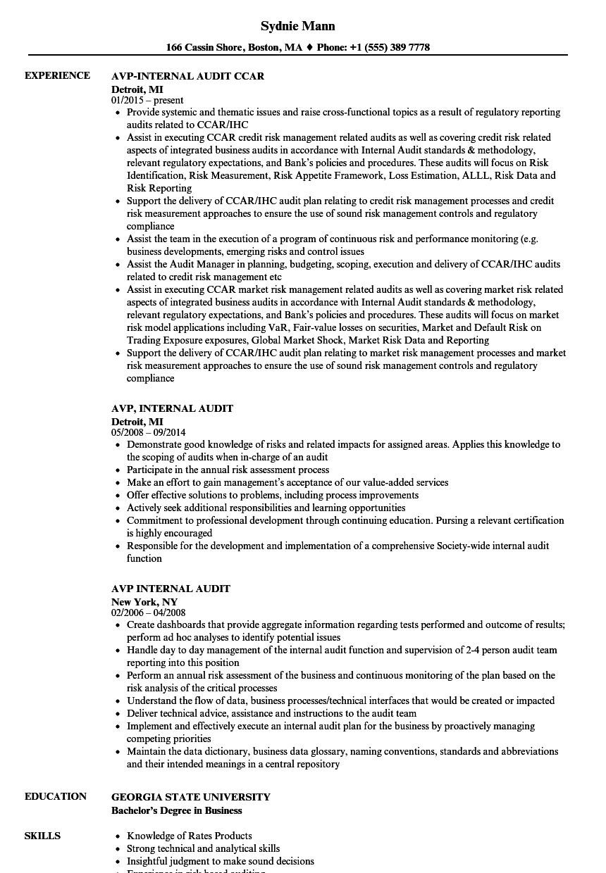 Avp Internal Audit Resume Samples Velvet Jobs