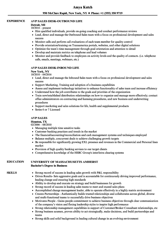 Avp Sales Resume Samples Velvet Jobs