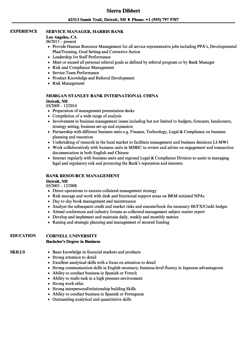 Bank Resume Samples | Velvet Jobs