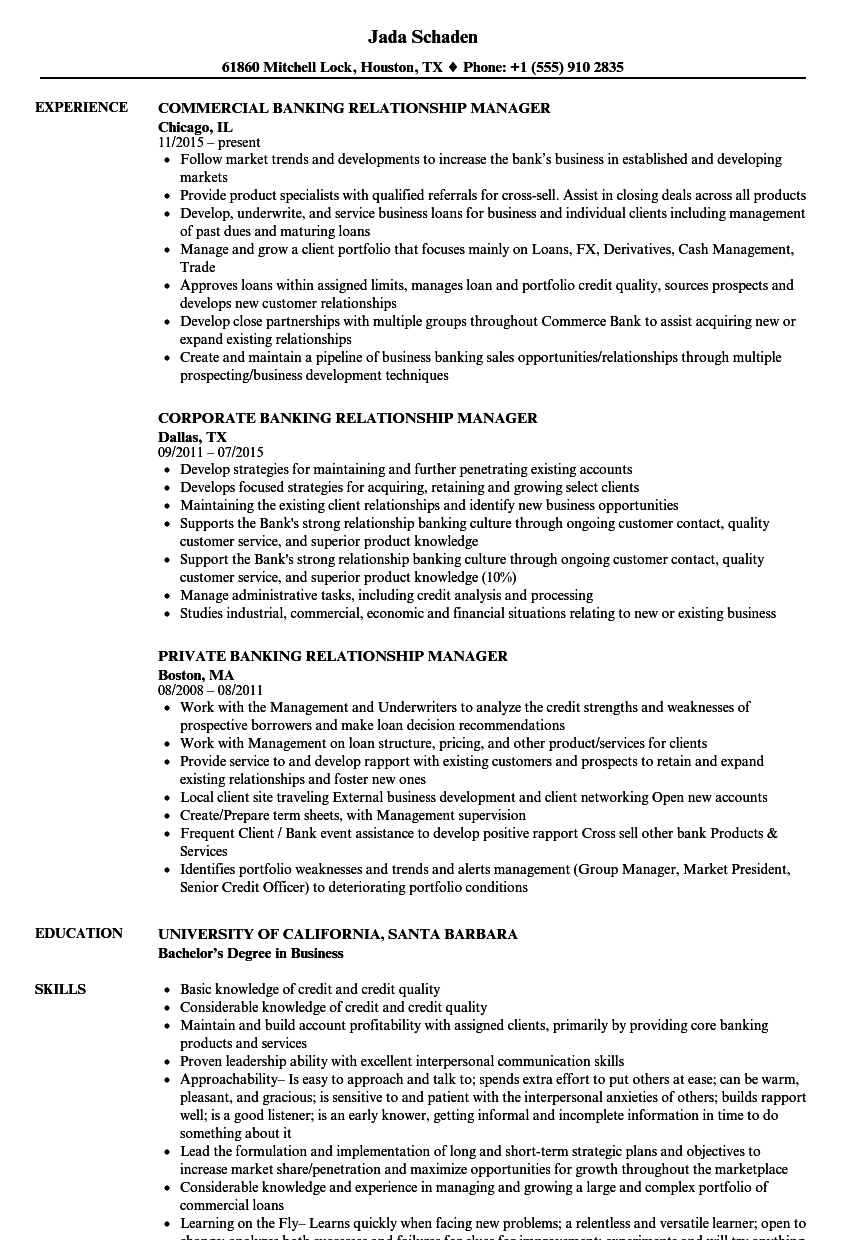 Banking Relationship Manager Resume Samples | Velvet Jobs