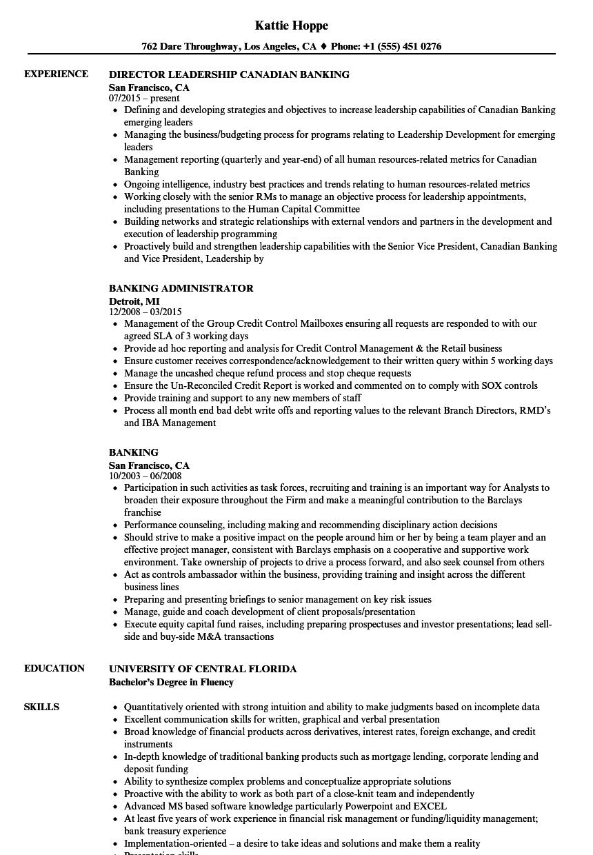 Velvet Jobs  Banking Resume Examples