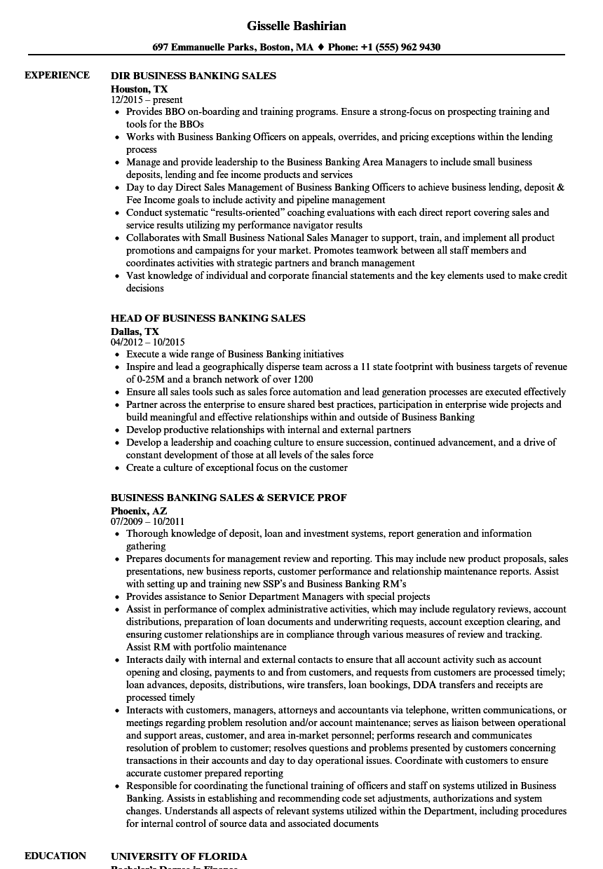 download banking sales resume sample as image file - Banking Sales Resume