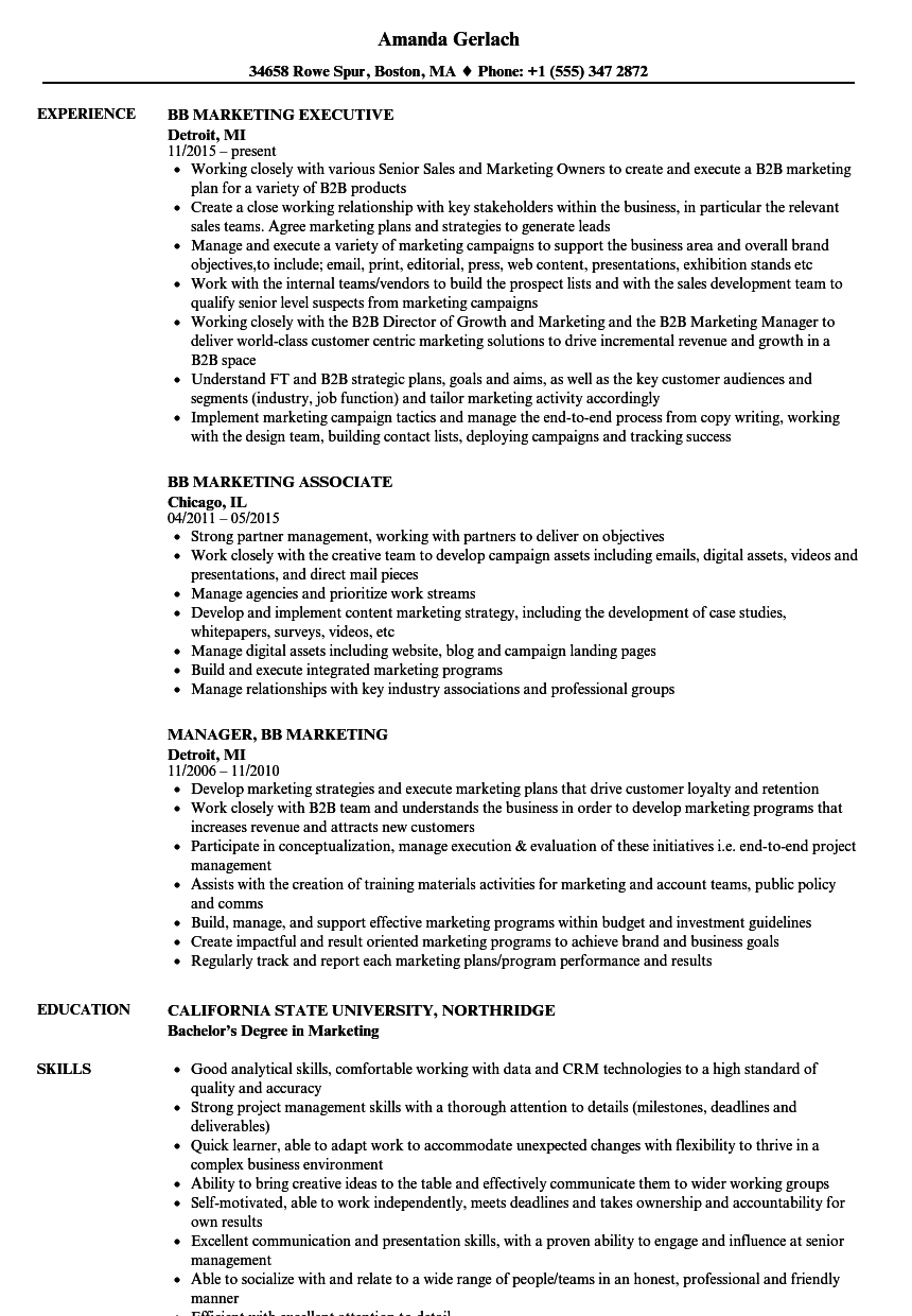 Doc 8001035 Marketing Resume Sample Marketing Resume Examples