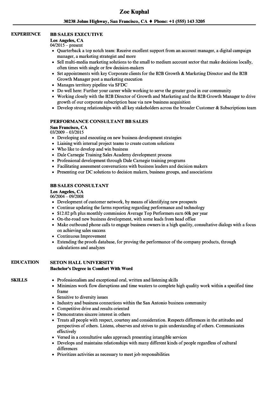 bb sales resume samples velvet jobs