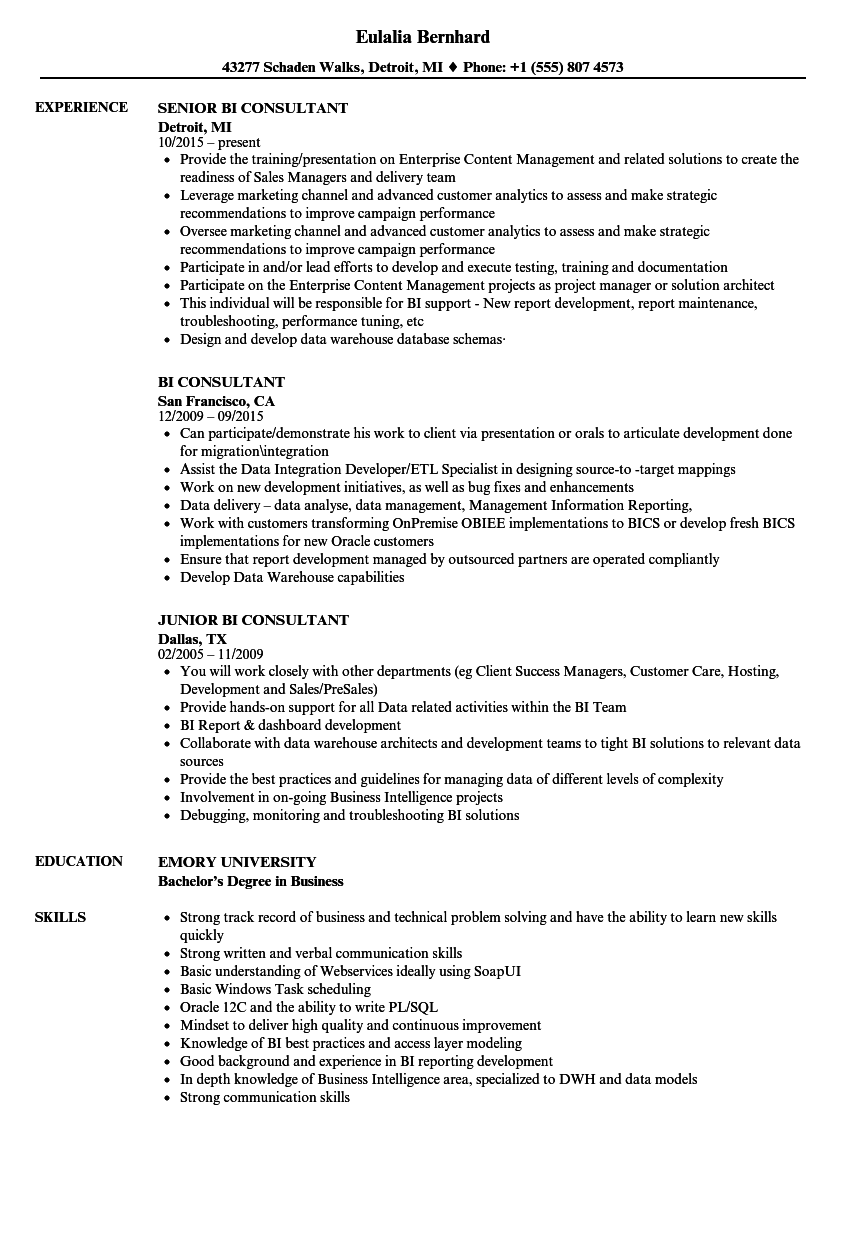 BI Consultant Resume Samples | Velvet Jobs