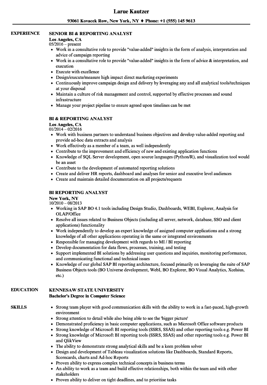 bi  u0026 reporting resume samples