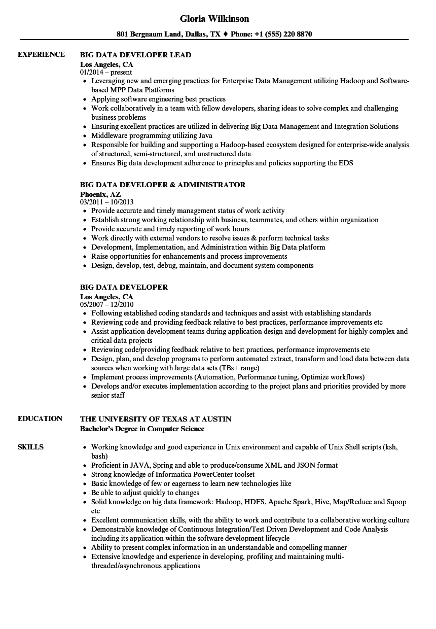 big data developer resume samples