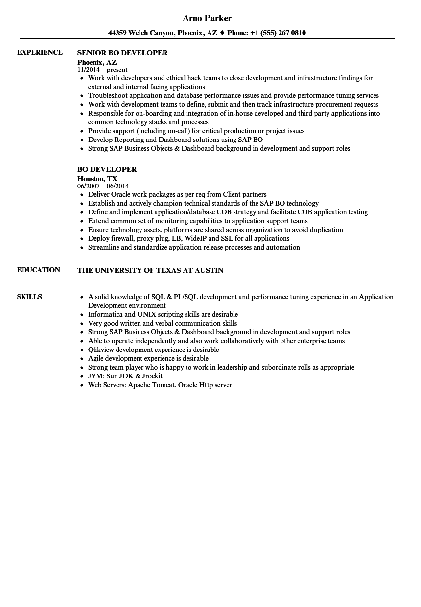 BO Developer Resume Samples | Velvet Jobs
