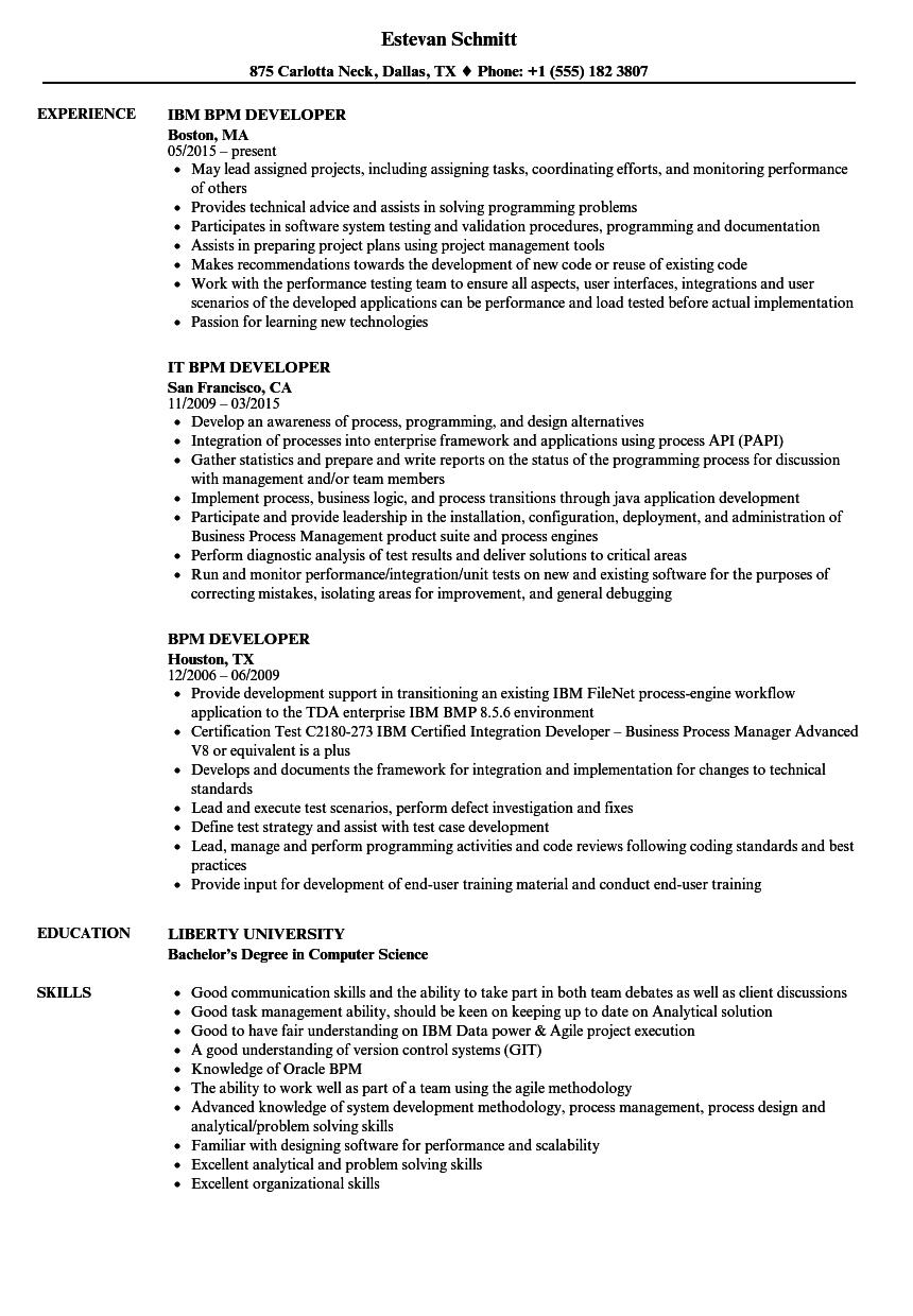 BPM Developer Resume Samples | Velvet Jobs
