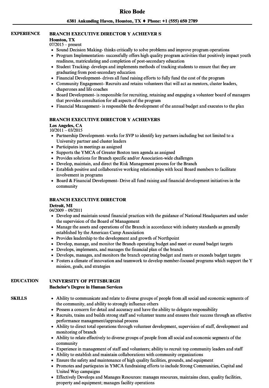branch executive director resume samples