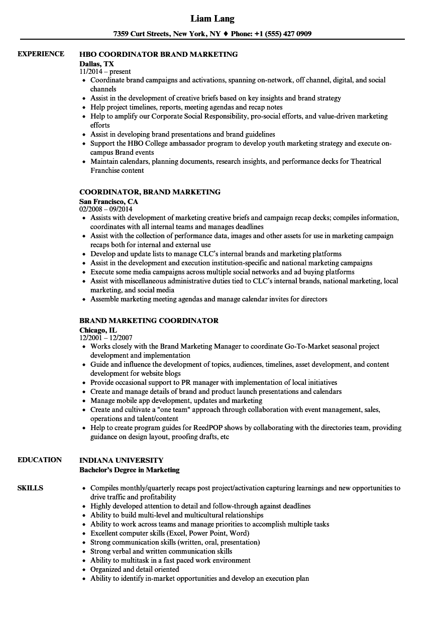 Download Brand Marketing Coordinator Resume Sample As Image File