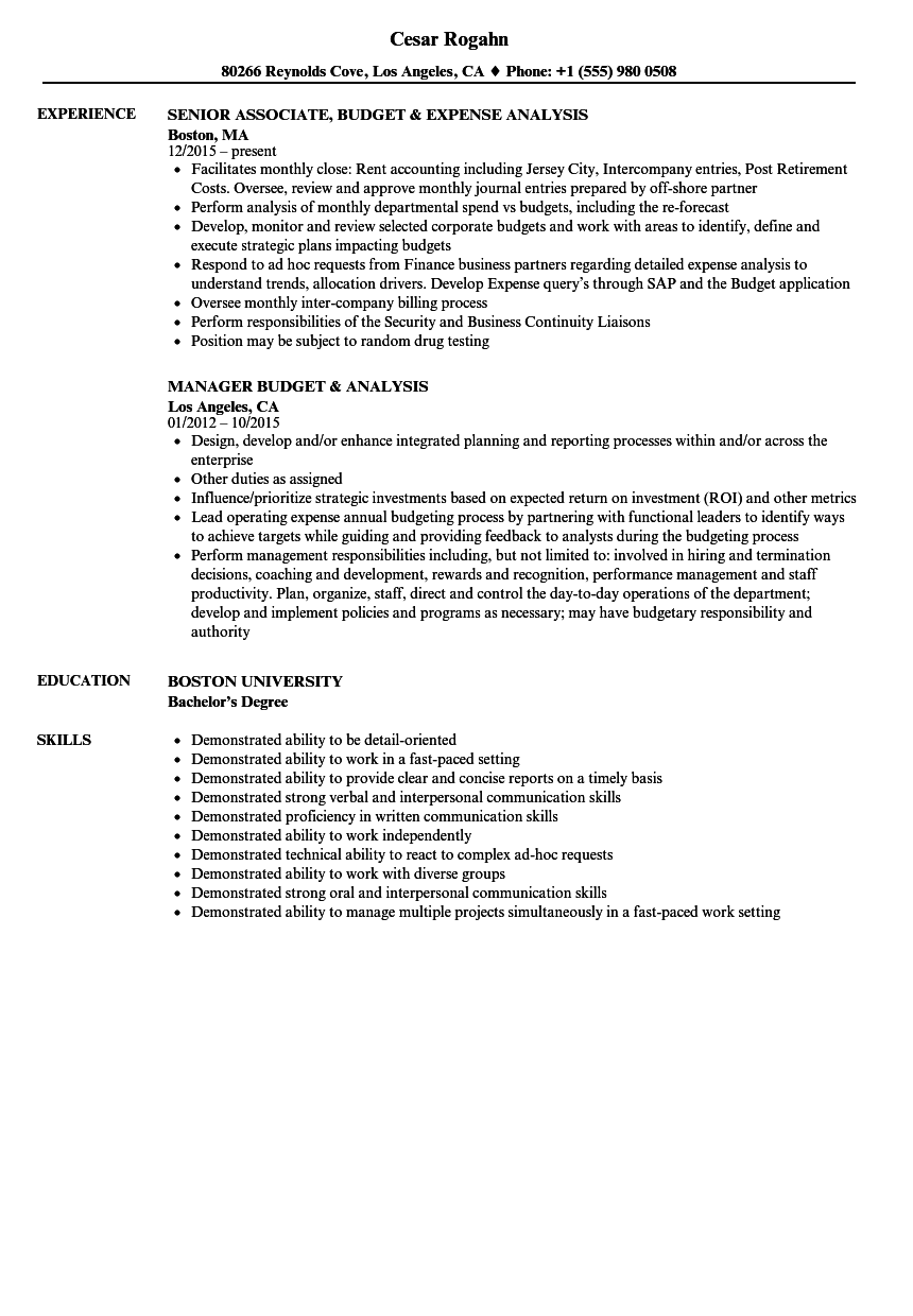 budget analysis resume samples