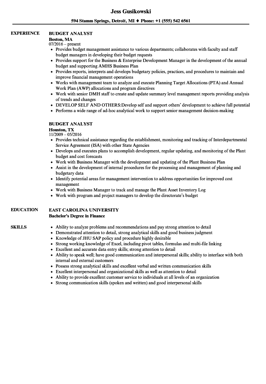 Budget Analyst Resume Samples Velvet Jobs