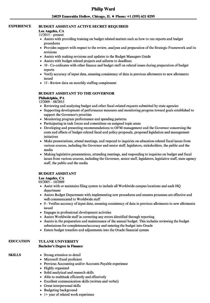Budget Assistant Resume Samples Velvet Jobs
