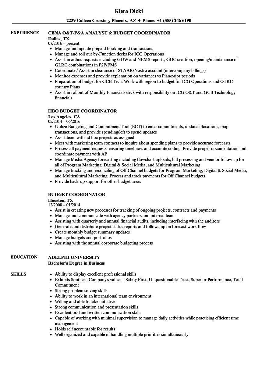 budget coordinator resume samples velvet jobs