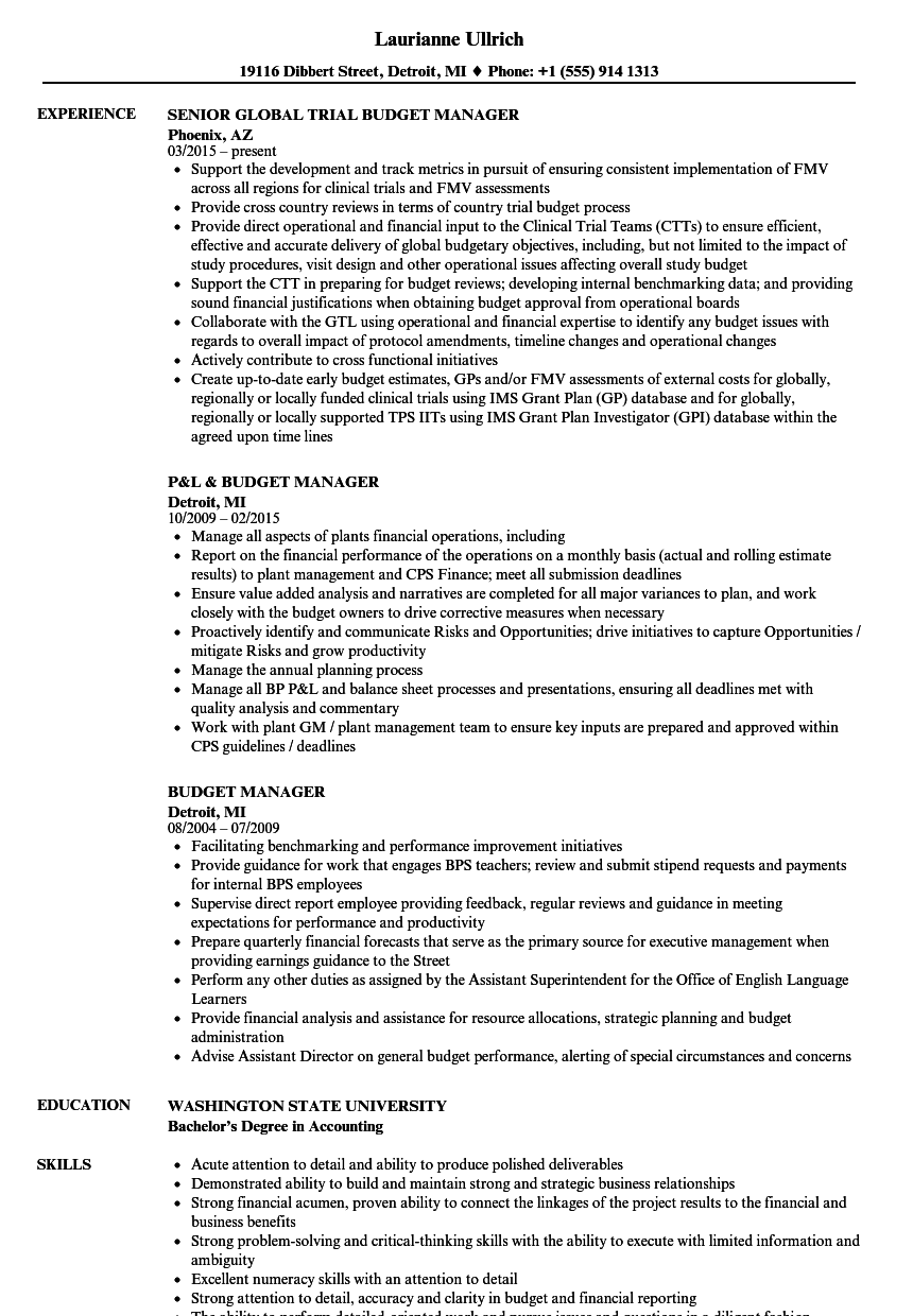 budget manager resume samples velvet jobs