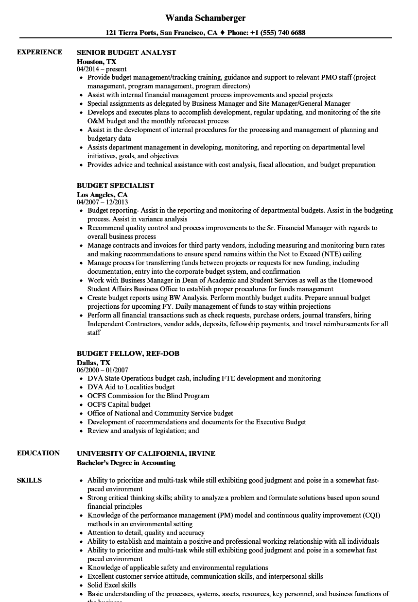 Budget Analyst Resume.Budget Resume Samples Velvet Jobs