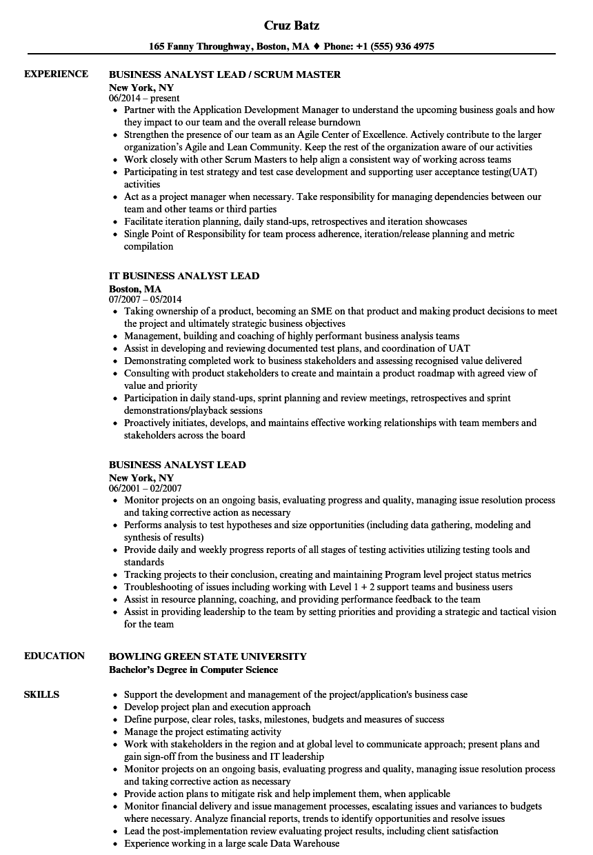 business analyst lead resume samples