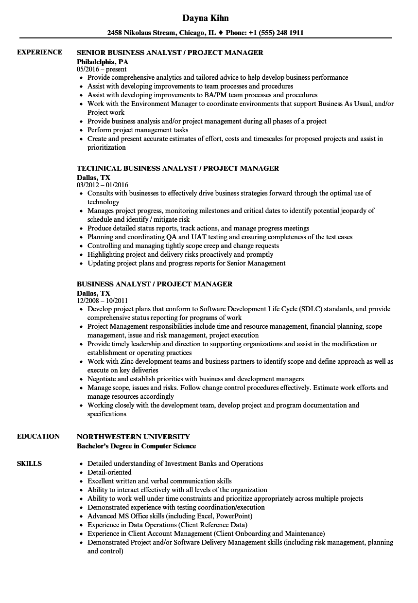 Business Analyst Project Manager Resume Samples | Velvet Jobs