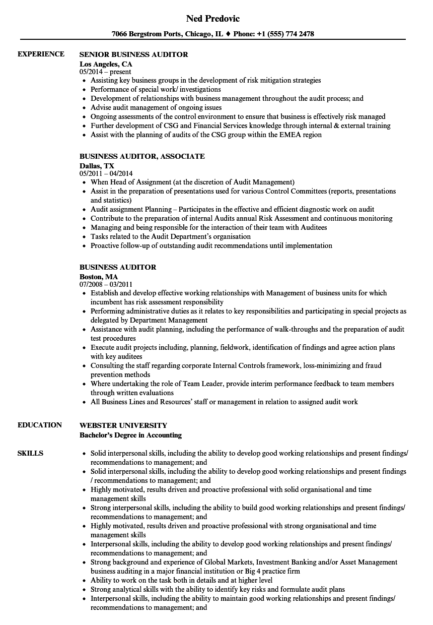 business auditor resume samples