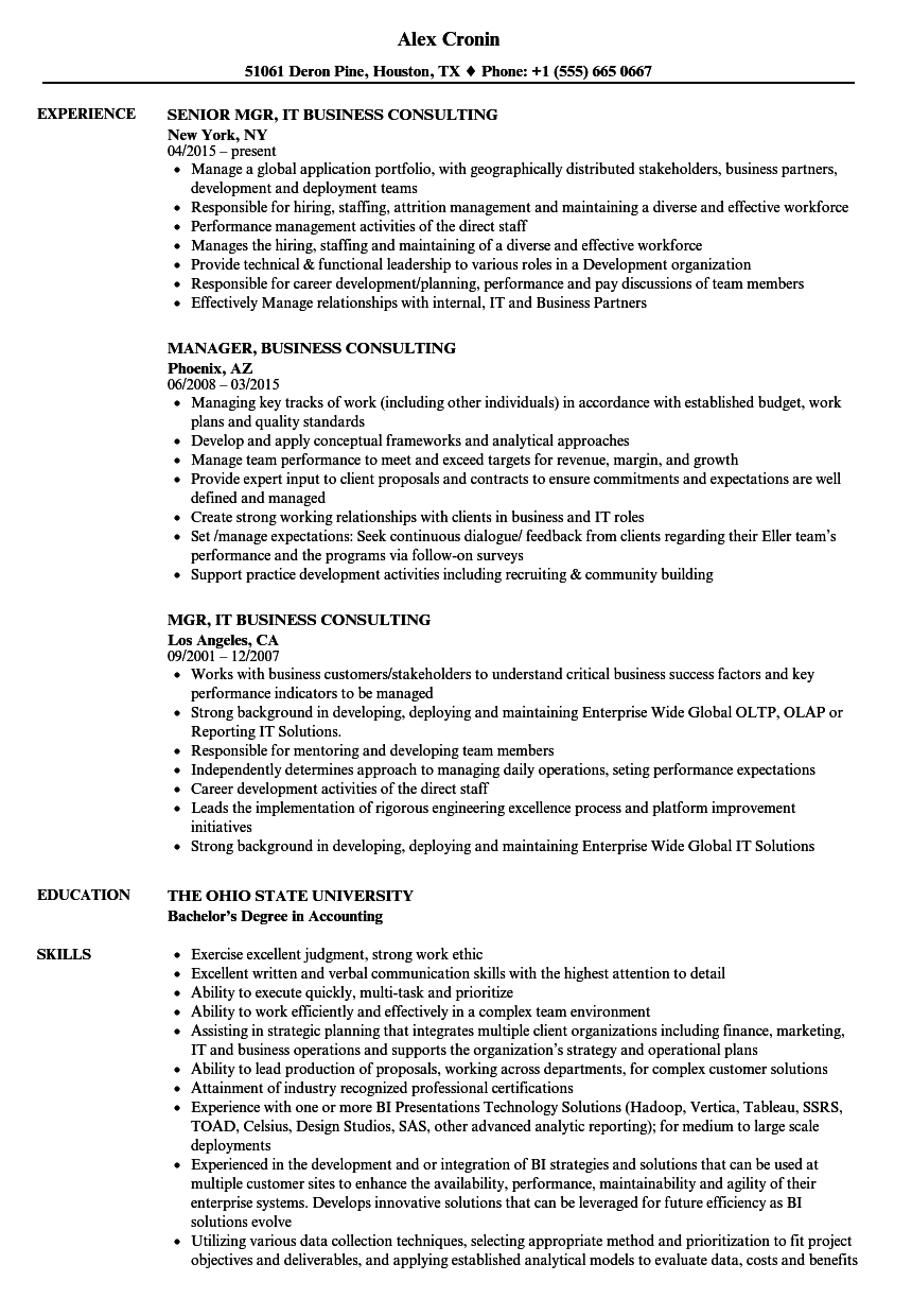 Business Consulting Resume Samples | Velvet Jobs