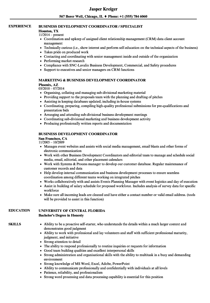 business development coordinator resume samples