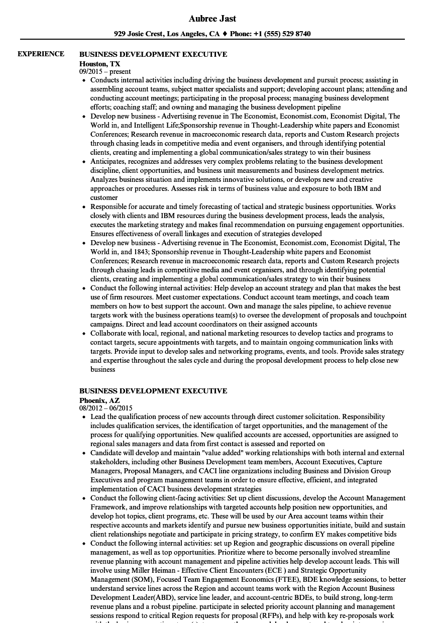 Business Development Executive Resume Samples Velvet Jobs