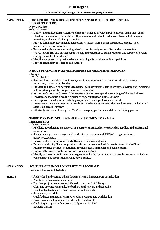 Business Development Partner Manager Resume Samples | Velvet Jobs