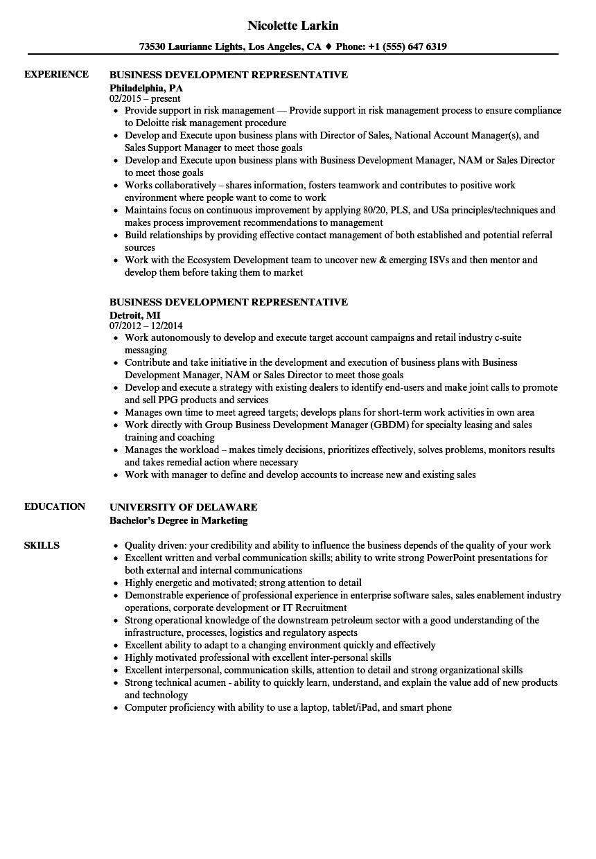 business development representative resume samples