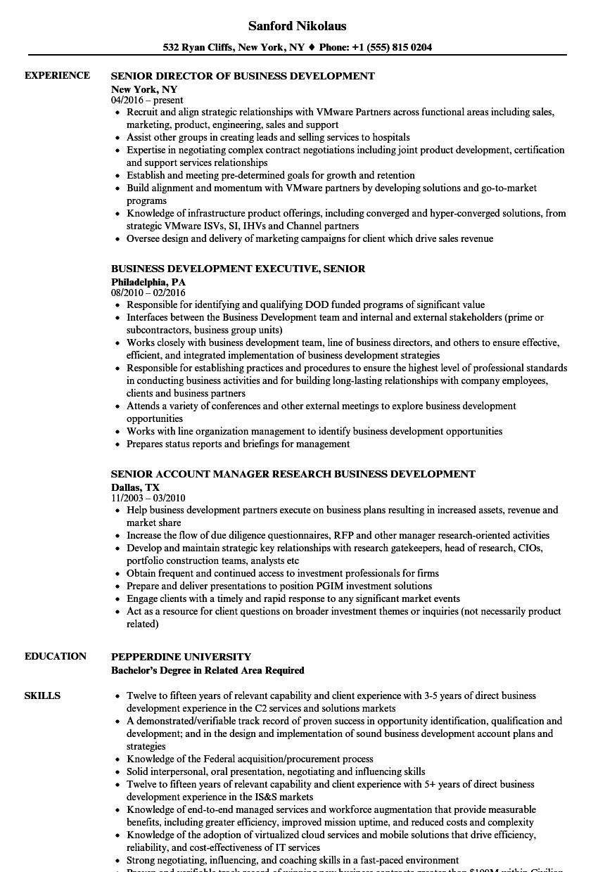 Business Development Senior Resume Samples Velvet Jobs