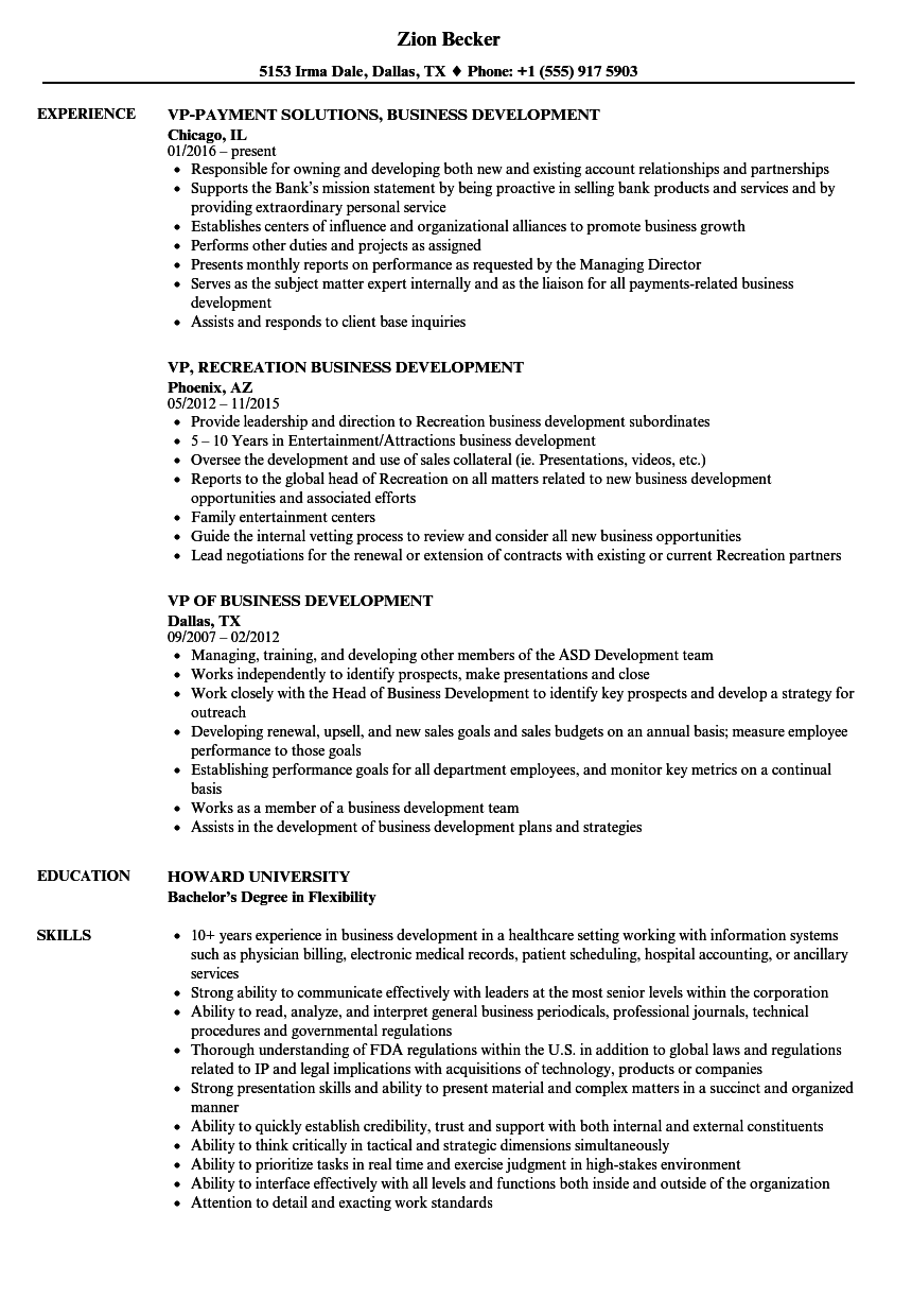 business development vp resume samples