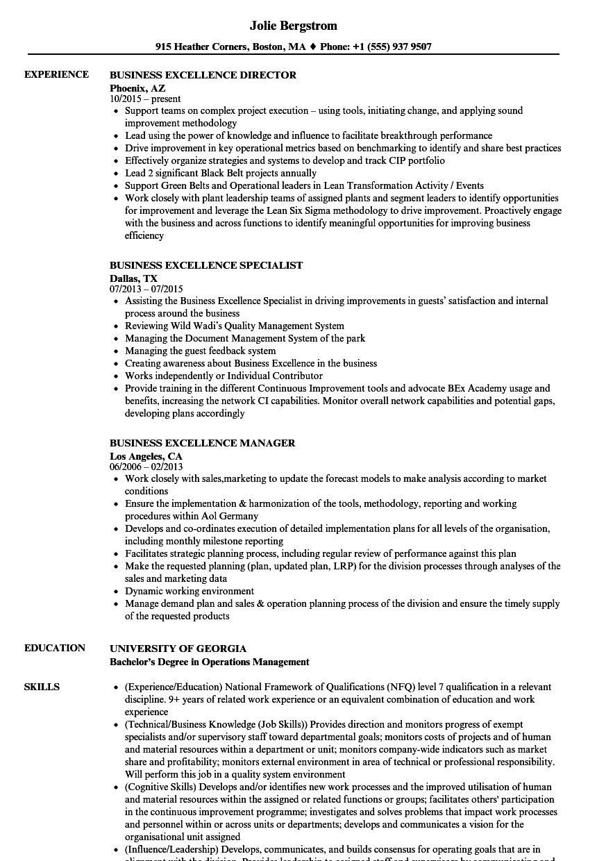 Business Excellence Resume Samples | Velvet Jobs