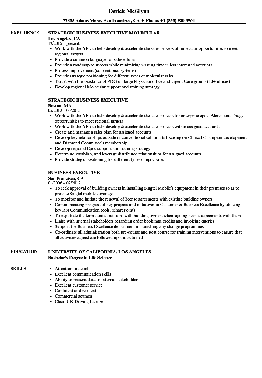 business executive resume samples