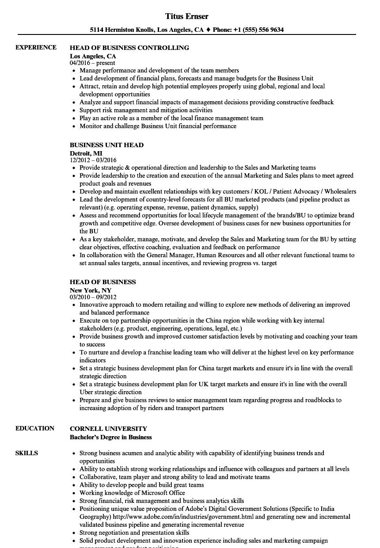 Business Head Resume Samples Velvet Jobs