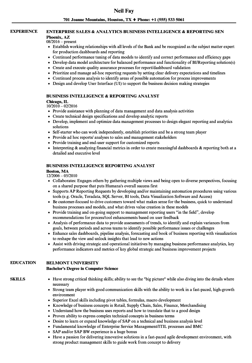 Business Intelligence Reporting Resume Samples Velvet Jobs