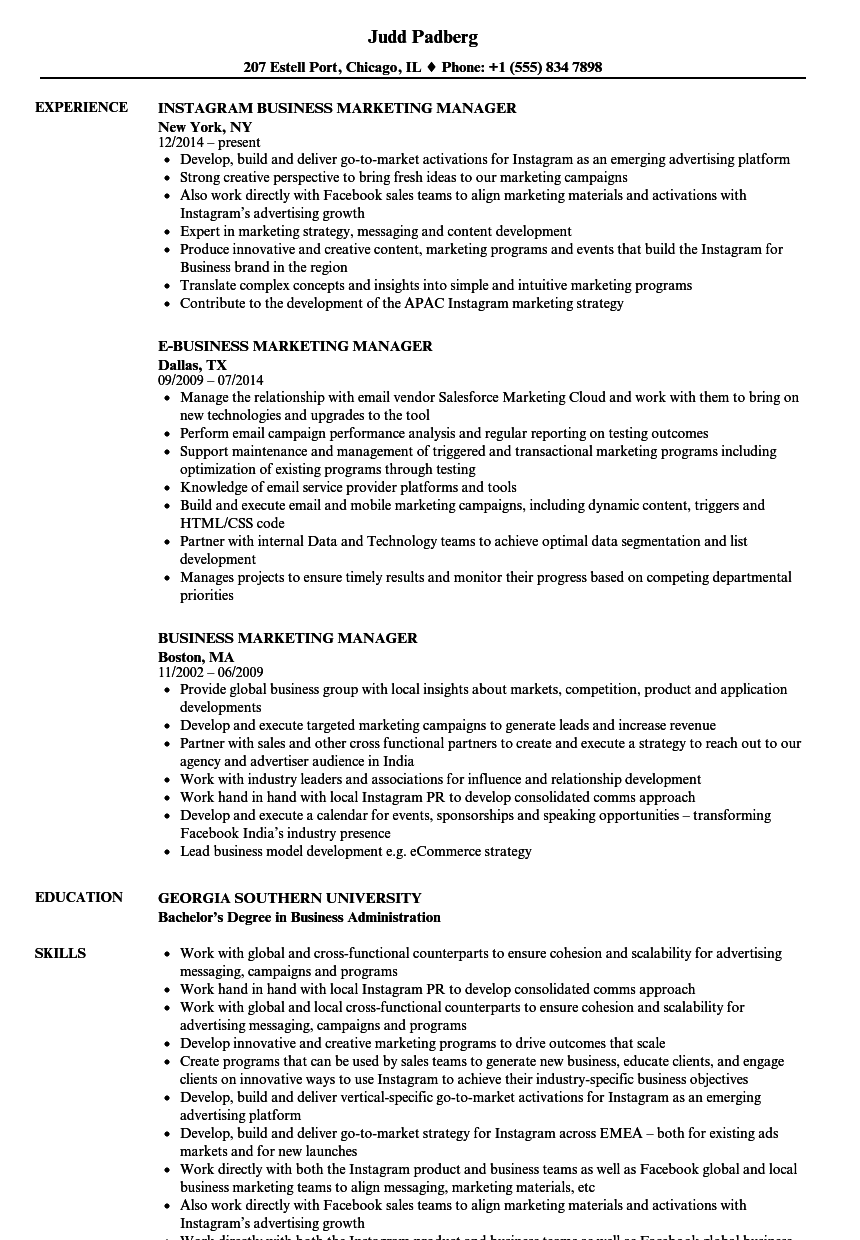 Download Business Marketing Manager Resume Sample As Image File  Marketing Sample Resume